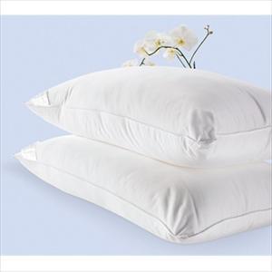 Better Than Down Standard Pillows (Set of 2)