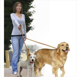 No Tangle Dual Leash