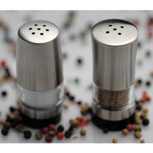 Geminis 18/10 SS Salt & Pepper Set