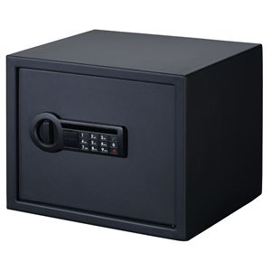Personal Storage Electronic Lock Safe in Black