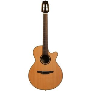 Pro Series 3 Acoustic-Electric Guitar with Case
