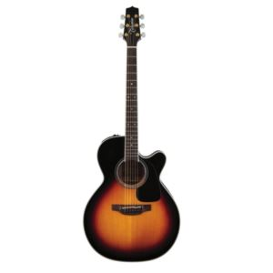Pro Series 6 Acoustic-Electric Guitar with Case