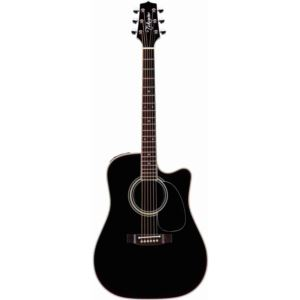 EF341SC Pro Acoustic-Electric Guitar with Case