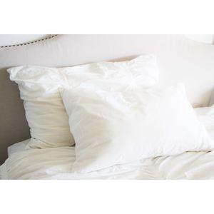 SmartSilk Two-Pack Standard Pillows, Medium/Firm