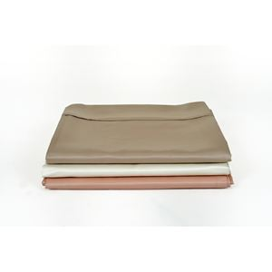 Flat And Fitted Sheet Set King Champagne