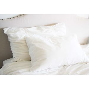 SmartSilk Two-Pack Queen Pillows, Medium/Firm