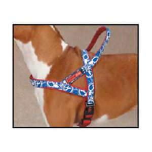 Harness-Blue/Small