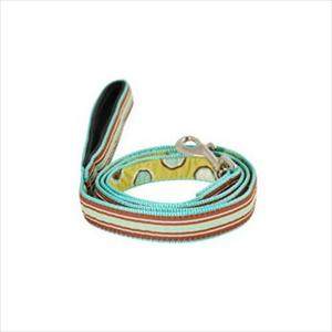 Ribbon Leash Aqua Brown