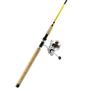 Safina Pro Spinning Combo- 7'0""