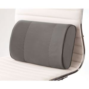 Mini Lumbar Support Cushion w/Biosense Memory Foam, Cooling Gel