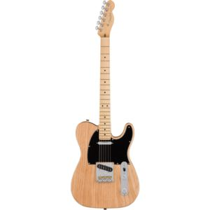 American Professional Telecaster with Case