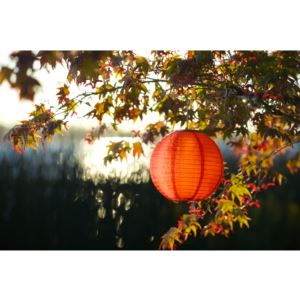Soji Original Solar Lantern - Orange-