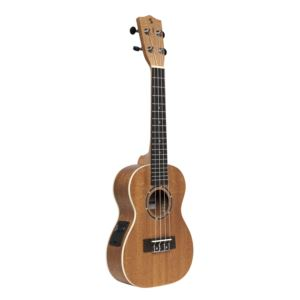 Stagg Concert acoustic/Electric Ukelele