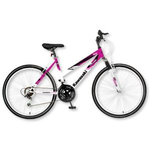 "Womens 26"" DX 21 Speed Mountain Bike"